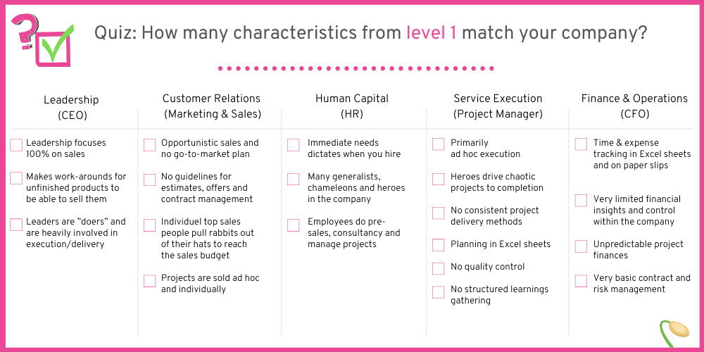 How many characteristics from companies on level 1 can you spot in your company?