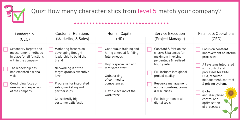 How many characteristics from companies on level 5 can you spot in your company?